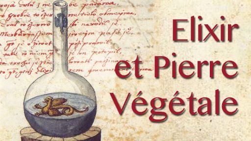 Elixir et Pierre Végétale, les bases théoriques de la spagyrie