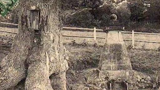 Chemins initiatiques en pays d'Auge : la fontaine guérisseuse Saint-Méen du Pré-d'Auge