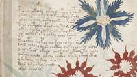 malet manuscrit voynich 3