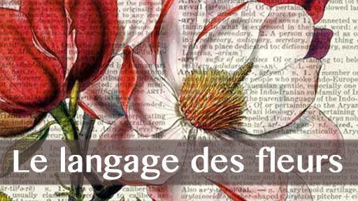 Le langage des fleurs, métaphore des passions humaines ?